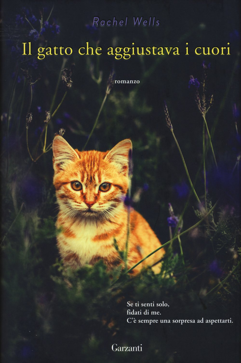 Il gatto che aggiustava i cuori Book Cover
